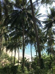 Surin-beach-phuket-thailande