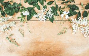 fleurs fêtes des meres-unsplash