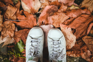 photo d'automne Stan Smith Le Corner d'Evangeline